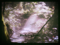 It's big, black, and mean. Daryl has seen it, but can't convince his nephew the dog exists!